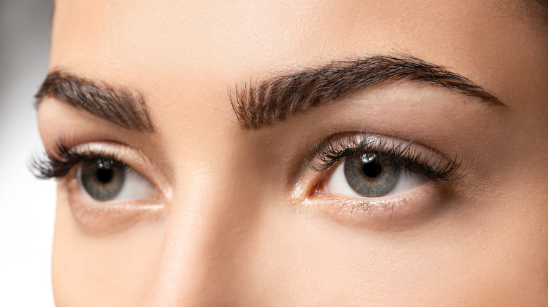 The Perfect Eyebrow Shape For Your Face-5056